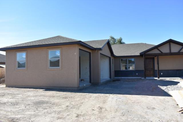 1201 Woodland Avenue, Fruita, CO 81521 (MLS #20193995) :: CapRock Real Estate, LLC