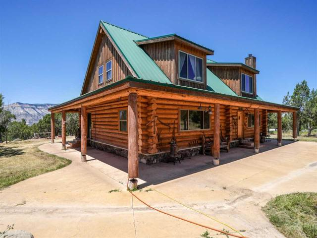 2277 House Top Mountain Road, Parachute, CO 81635 (MLS #20194016) :: The Christi Reece Group