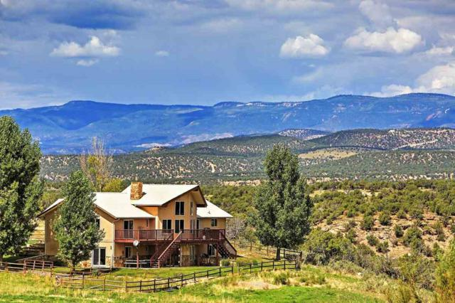 32101 Highway 145, Redvale, CO 81431 (MLS #20194049) :: The Grand Junction Group with Keller Williams Colorado West LLC