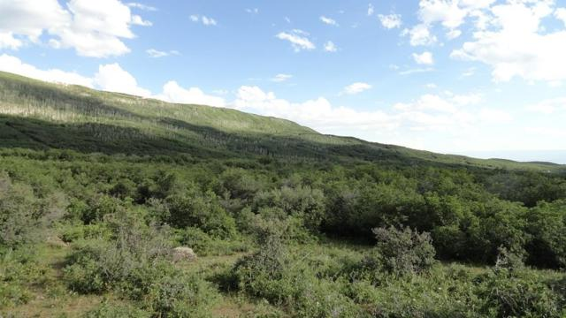TBD 3100 Road Lot 9, Hotchkiss, CO 81419 (MLS #20194074) :: The Joe Reed Team