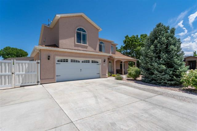793 Joann Court, Fruita, CO 81521 (MLS #20194077) :: The Grand Junction Group with Keller Williams Colorado West LLC