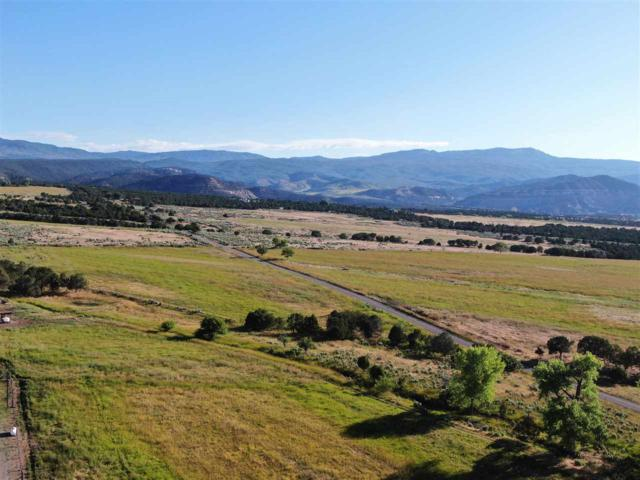 25925 Q 25 Road, Cedaredge, CO 81413 (MLS #20194102) :: The Grand Junction Group with Keller Williams Colorado West LLC