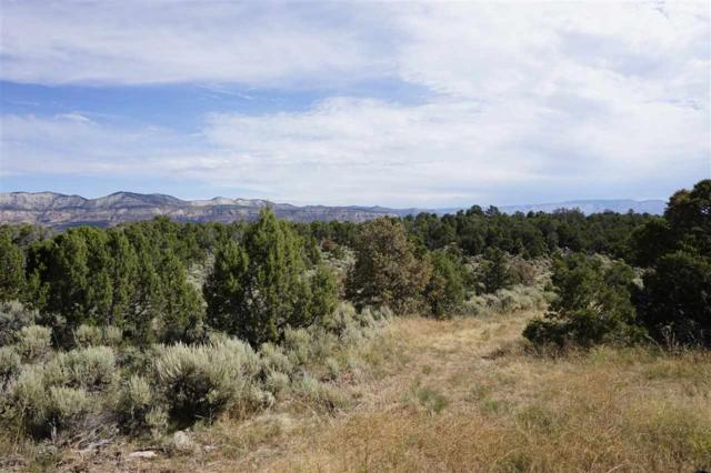 1757 35 1/10 Road, De Beque, CO 81630 (MLS #20194205) :: The Christi Reece Group
