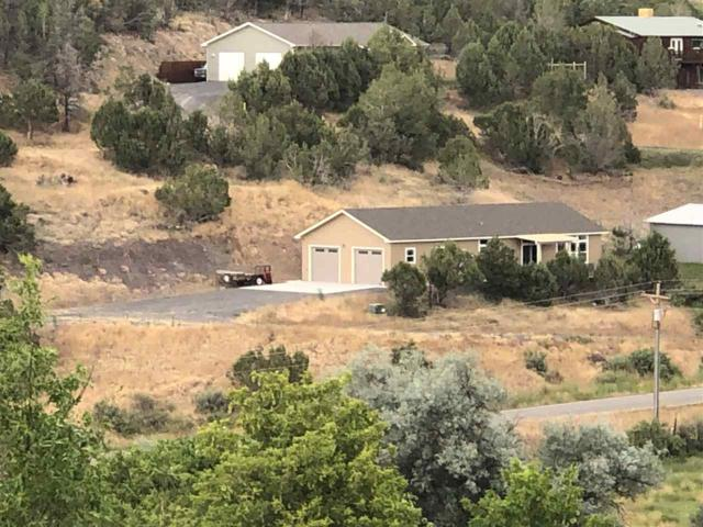 2006 Cedar Crest Lane, Collbran, CO 81624 (MLS #20194222) :: The Grand Junction Group with Keller Williams Colorado West LLC