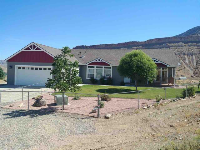 562 39 Road, Palisade, CO 81526 (MLS #20194281) :: The Christi Reece Group