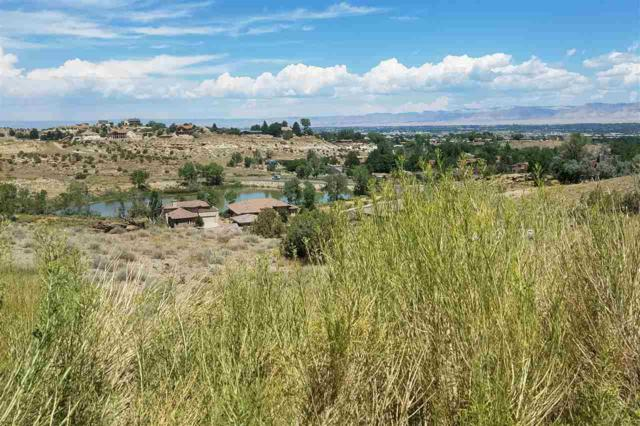 341 Redlands Mesa Drive, Grand Junction, CO 81507 (MLS #20194442) :: The Grand Junction Group with Keller Williams Colorado West LLC