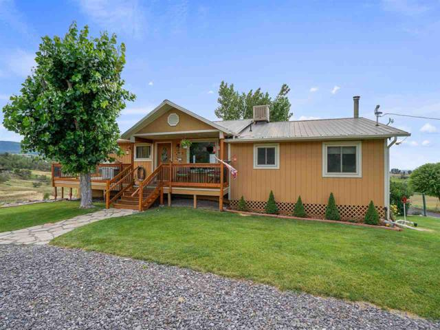 15083 59 1/2 Road, Collbran, CO 81624 (MLS #20194455) :: The Grand Junction Group with Keller Williams Colorado West LLC