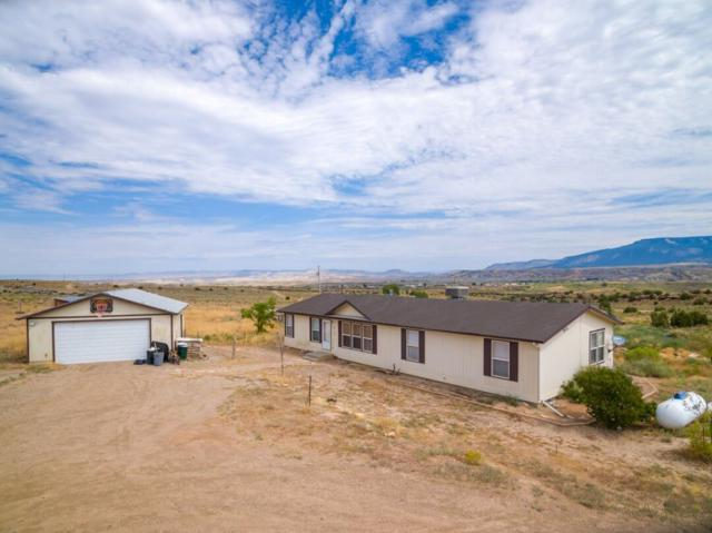 8525 Bean Ranch Road, Whitewater, CO 81527 (MLS #20194521) :: The Grand Junction Group with Keller Williams Colorado West LLC