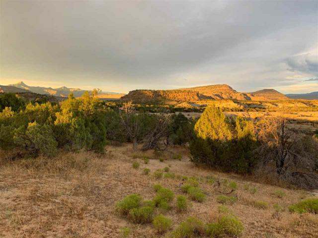 TBD 45 1/2 Road D, Mesa, CO 81643 (MLS #20194523) :: The Grand Junction Group with Keller Williams Colorado West LLC