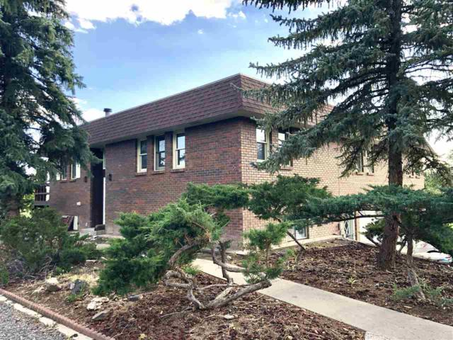 445 SW 1ST COURT, Cedaredge, CO 81413 (MLS #20194603) :: The Grand Junction Group with Keller Williams Colorado West LLC