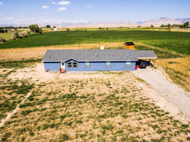 2146 1/2 M Road, Grand Junction, CO 81505 (MLS #20195254) :: The Christi Reece Group