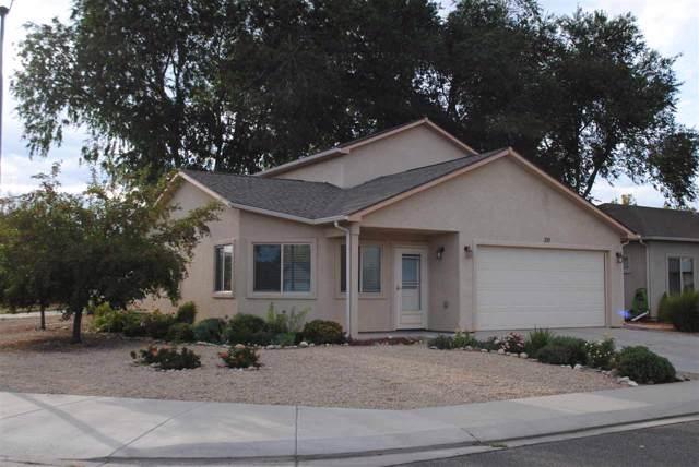 311 Carriage Hills Court, Grand Junction, CO 81503 (MLS #20195259) :: CapRock Real Estate, LLC