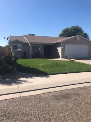 225 Narrow Leaf Drive, Fruita, CO 81521 (MLS #20195322) :: CapRock Real Estate, LLC