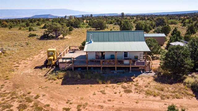 6531 Uncompahgre Divide Road, Whitewater, CO 81527 (MLS #20195342) :: The Christi Reece Group
