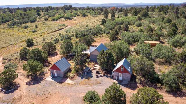 6509 Uncompahgre Divide Road, Whitewater, CO 81527 (MLS #20195347) :: The Christi Reece Group