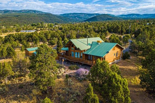 20828 Brimstone Road, Cedaredge, CO 81413 (MLS #20195361) :: The Grand Junction Group with Keller Williams Colorado West LLC