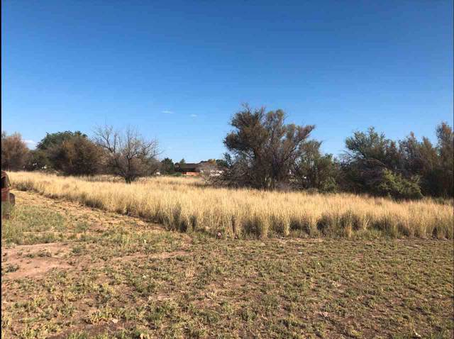 TBD lot 5 Catalina Avenue, Fruita, CO 81521 (MLS #20195434) :: The Grand Junction Group with Keller Williams Colorado West LLC