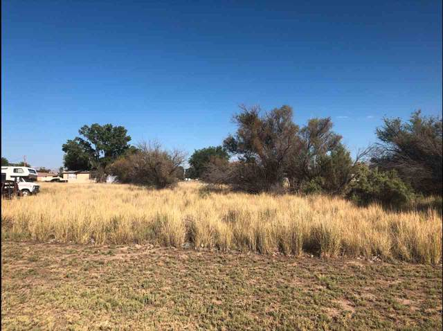 TBD Lot 15 Park Street, Fruita, CO 81521 (MLS #20195439) :: The Grand Junction Group with Keller Williams Colorado West LLC