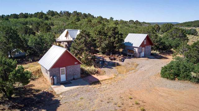 6509 Uncompahgre Divide Road, Whitewater, CO 81527 (MLS #20195496) :: The Christi Reece Group