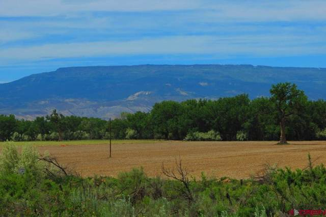 16337 D 1/4 Road, Delta, CO 81416 (MLS #20195509) :: The Grand Junction Group with Keller Williams Colorado West LLC