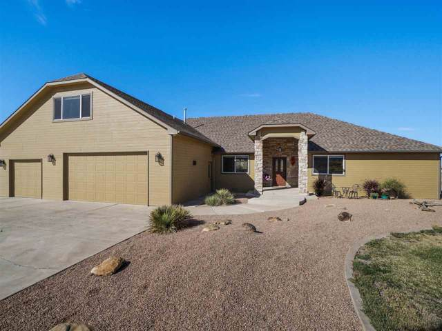 155 Desert Vista Court, Whitewater, CO 81527 (MLS #20195591) :: The Grand Junction Group with Keller Williams Colorado West LLC