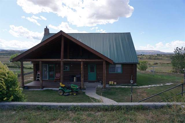 529 County Road 326, Silt, CO 81652 (MLS #20195663) :: The Christi Reece Group