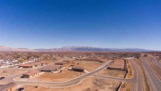 203 Tenderfoot Drive, Grand Junction, CO 81503 (MLS #20195669) :: CapRock Real Estate, LLC