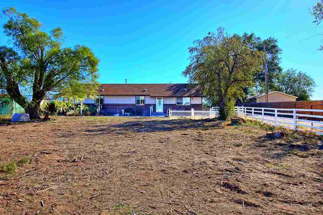 1066 19 1/2 Road, Fruita, CO 81521 (MLS #20195706) :: The Grand Junction Group with Keller Williams Colorado West LLC