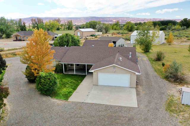 1351 19 Road, Fruita, CO 81521 (MLS #20195767) :: The Grand Junction Group with Keller Williams Colorado West LLC