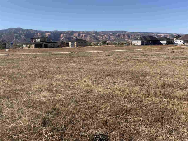 1992 Chris Nall Drive, Fruita, CO 81521 (MLS #20195871) :: The Grand Junction Group with Keller Williams Colorado West LLC