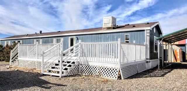 10763 Mesa View Loop, Eckert, CO 81418 (MLS #20196022) :: CapRock Real Estate, LLC