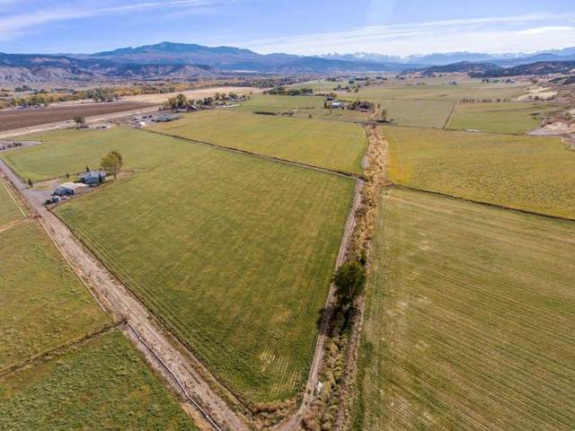 TBD 90.96acres S Highway 550, Montrose, CO 81403 (MLS #20196048) :: The Christi Reece Group