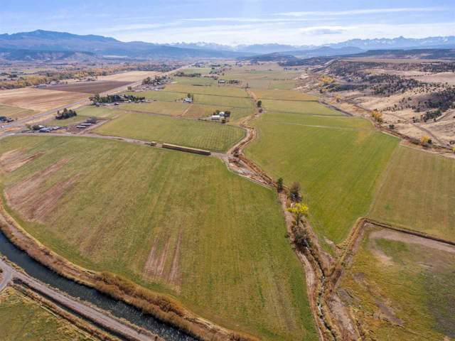 TBD 55.80 acres S Highway 550, Montrose, CO 81403 (MLS #20196055) :: The Christi Reece Group