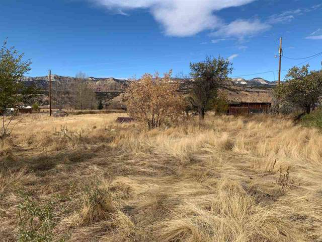 TBD Highway 330, Collbran, CO 81624 (MLS #20196102) :: CapRock Real Estate, LLC