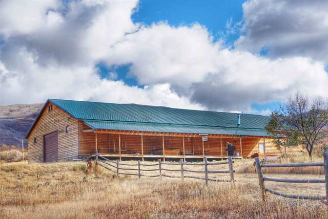 7050 Highway 65, Mesa, CO 81643 (MLS #20196363) :: The Grand Junction Group with Keller Williams Colorado West LLC