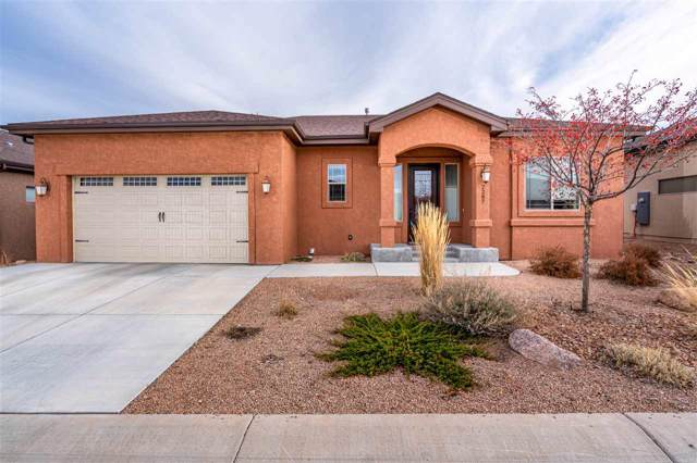 2287 Red Vista Court, Grand Junction, CO 81507 (MLS #20196379) :: The Christi Reece Group