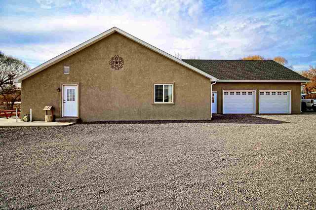 1338 M Road, Loma, CO 81524 (MLS #20196481) :: The Danny Kuta Team