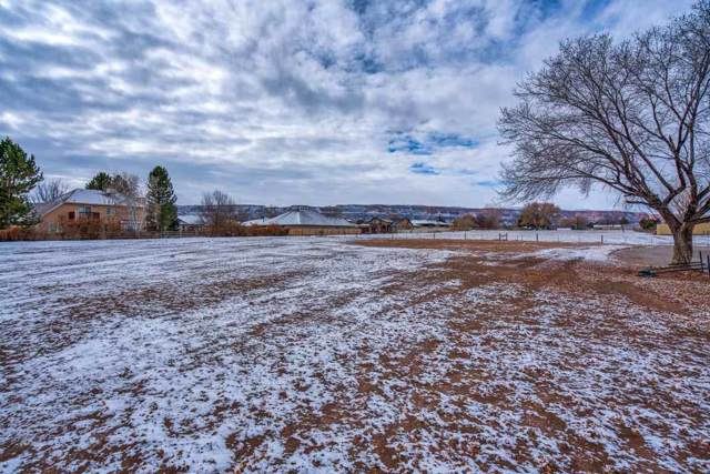 2325 W E 1/2 Road, Grand Junction, CO 81507 (MLS #20196501) :: The Danny Kuta Team