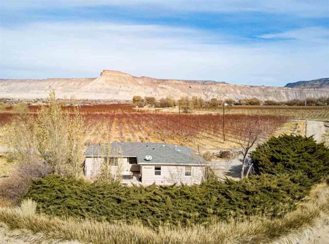 459 & 451 35 Road, Palisade, CO 81526 (MLS #20196631) :: CapRock Real Estate, LLC