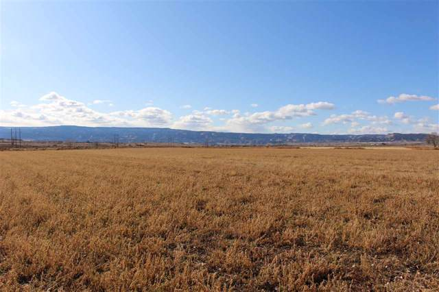 TBD O Road, Loma, CO 81524 (MLS #20196686) :: The Grand Junction Group with Keller Williams Colorado West LLC