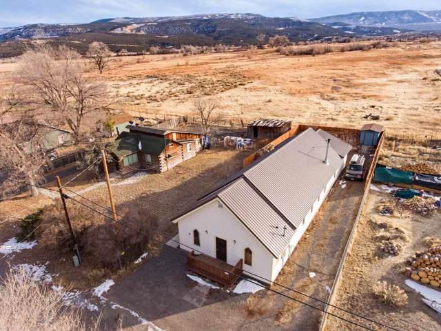 49067 Ke Road, Mesa, CO 81643 (MLS #20196771) :: CapRock Real Estate, LLC