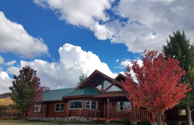 64701 Highway 330E, Collbran, CO 81624 (MLS #20200038) :: The Christi Reece Group