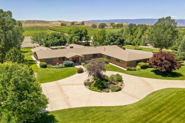 3339 C Road, Palisade, CO 81526 (MLS #20200067) :: The Christi Reece Group