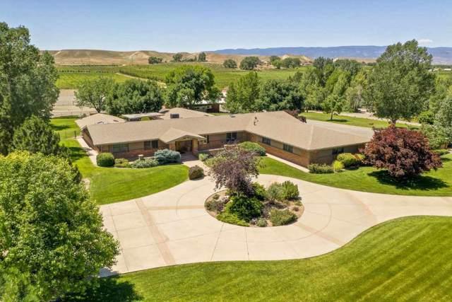 3339 C Road, Palisade, CO 81526 (MLS #20200067) :: CapRock Real Estate, LLC