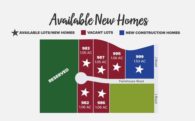 999 Farm House Road, Fruita, CO 81521 (MLS #20200168) :: CapRock Real Estate, LLC