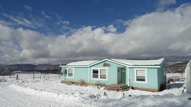 63494 E Highway 330, Collbran, CO 81624 (MLS #20200174) :: CapRock Real Estate, LLC