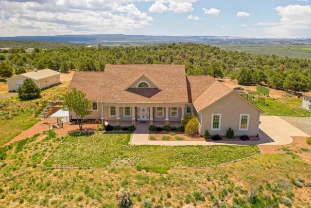 13098 A 3/4 Road, Glade Park, CO 81523 (MLS #20200208) :: The Christi Reece Group