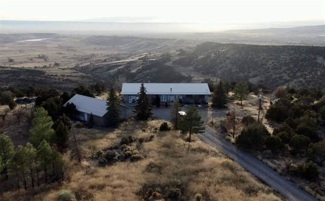 24742 Cedar Drive, Cedaredge, CO 81413 (MLS #20200221) :: The Grand Junction Group with Keller Williams Colorado West LLC