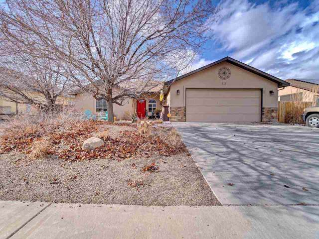 313 Arches Drive, Fruita, CO 81521 (MLS #20200321) :: The Christi Reece Group