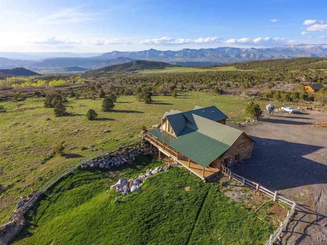 9291 54 Road, Mesa, CO 81643 (MLS #20200328) :: The Grand Junction Group with Keller Williams Colorado West LLC